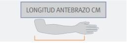 Icono Longitud Antebrazo cm 1